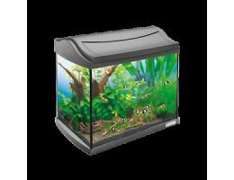 Tetra AquaArt Shrimps Discover Line аквариумный комплекс  20 л